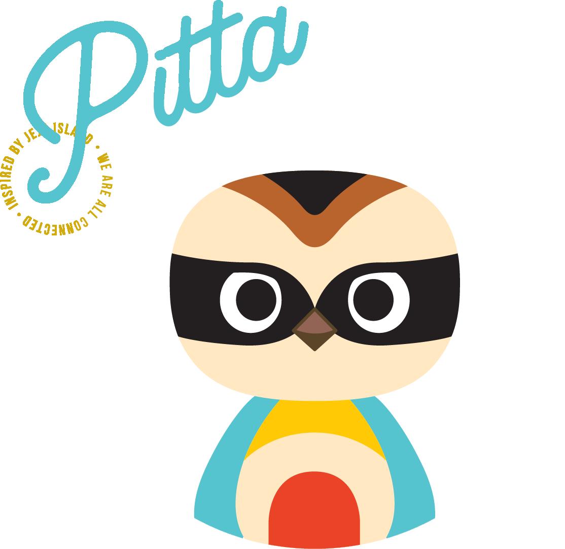 pitta image